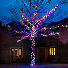 Multi Coloured outdoor Christmas tree lights