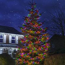 Multi Coloured outdoor Christmas tree lights