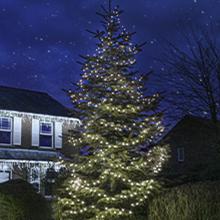 White outdoor Christmas tree lights