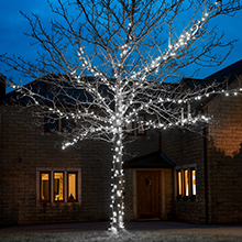 White outdoor Christmas tree lights