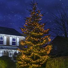 Warm White outdoor Christmas tree lights