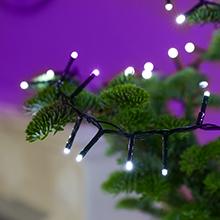 White Christmas tree lights