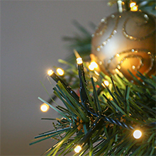Warm White Christmas tree lights