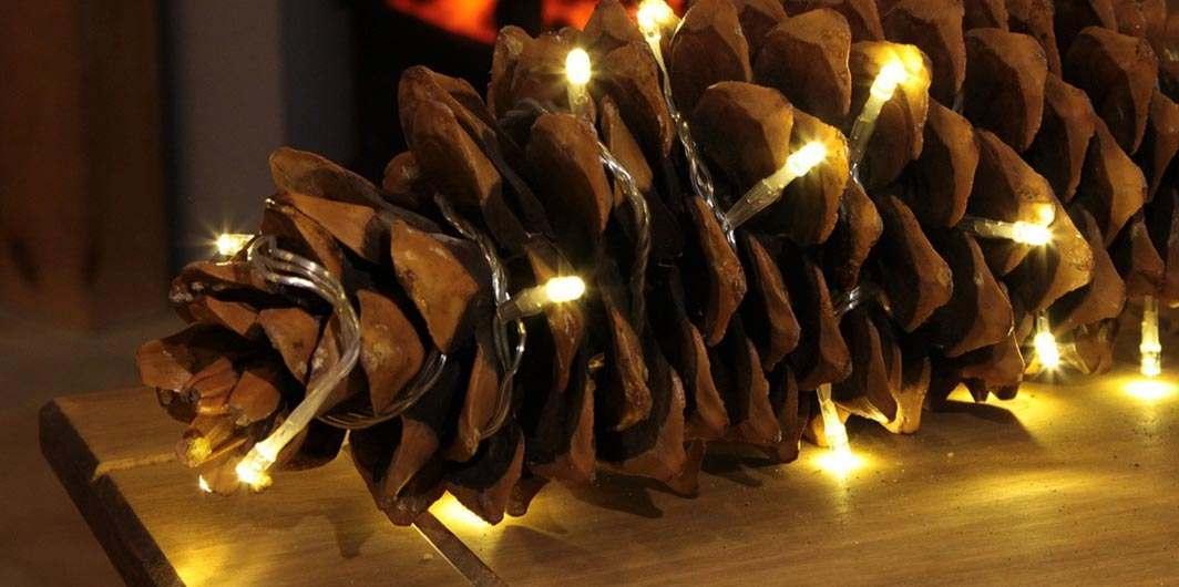 separation shoes 09fa1 c7aae Fairy Lights