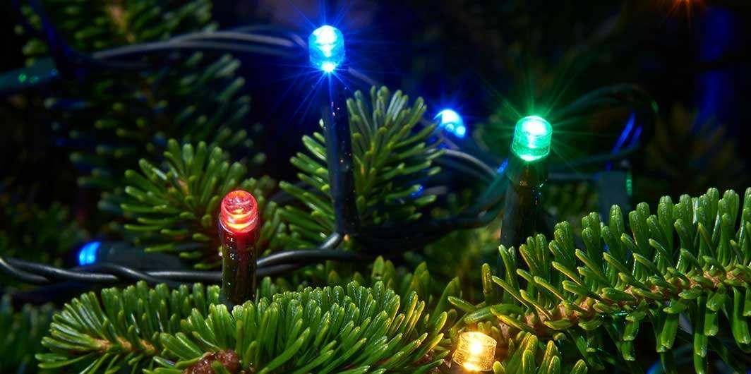 new styles 2fda7 2cfaa Christmas Tree Lights