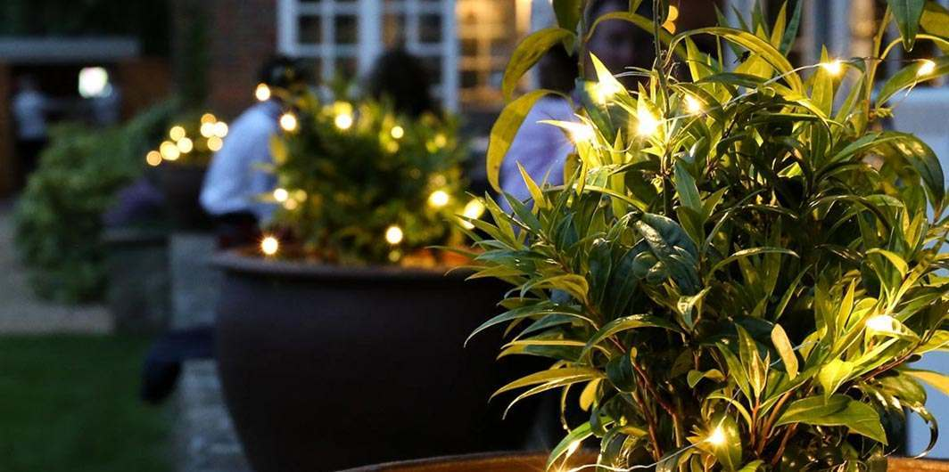Outdoor Fairy Lights Stunning High Quality Lighting At Festive