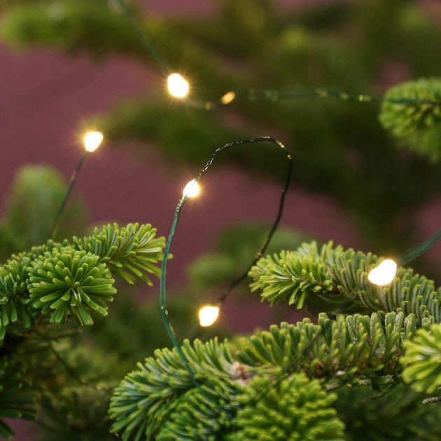 5m Plug In Green Firefly Wire Lights, 50 Warm White LEDs