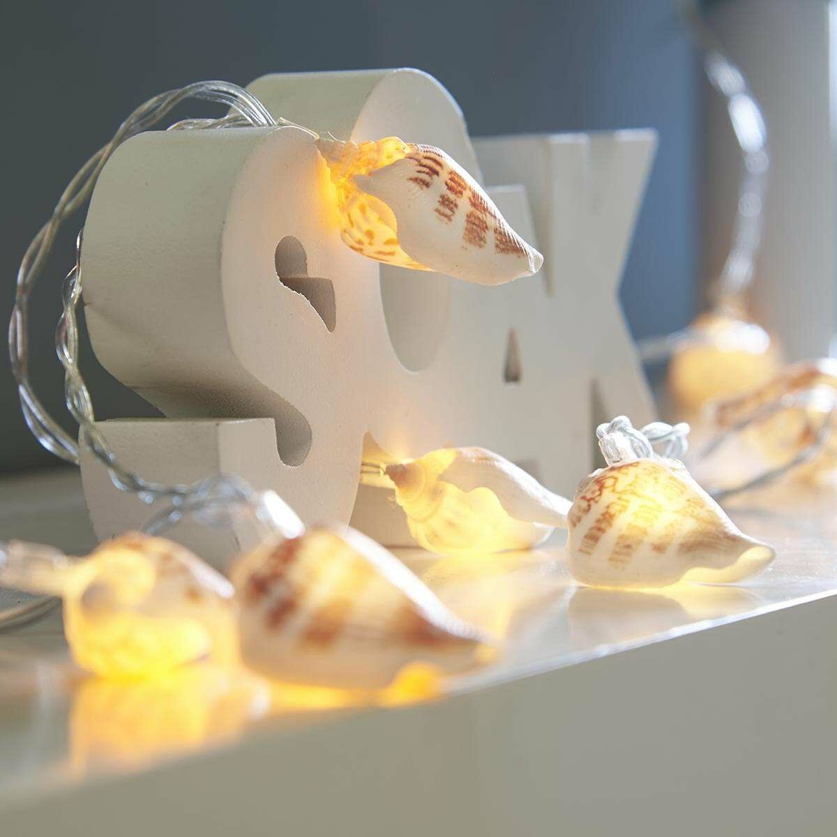 Battery Real Shell Fairy Lights, 10 Warm White LEDs