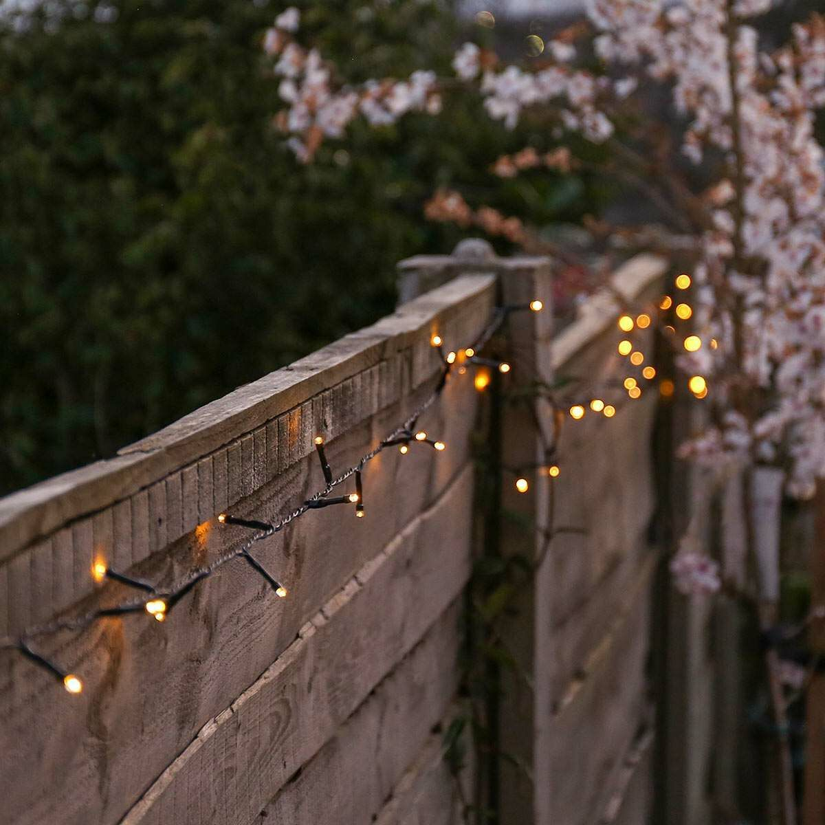 Picture of: Solar Multi Function Led Fairy Lights