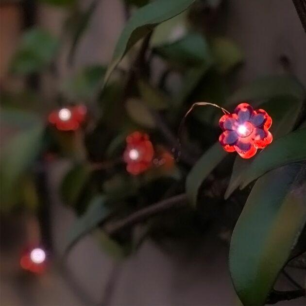 5m Solar Multi Function Copper Firefly Wire Flower Fairy Lights