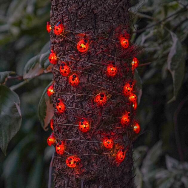 Solar Ladybird Firefly Wire Lights