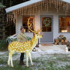 2m Large Brown Male Reindeer Commercial Sculpture, 3,860 White LEDs