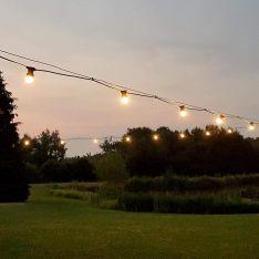 Catenary Garden Wire 20m