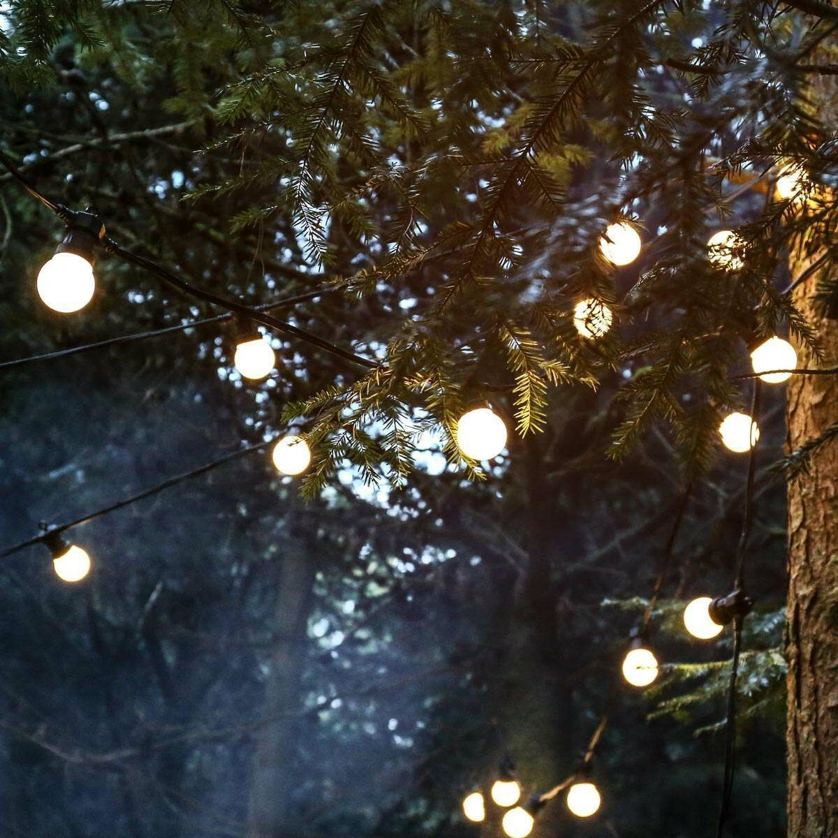 5m Festoon Lights, Connectable, 10 Warm White LEDs, Black Cable