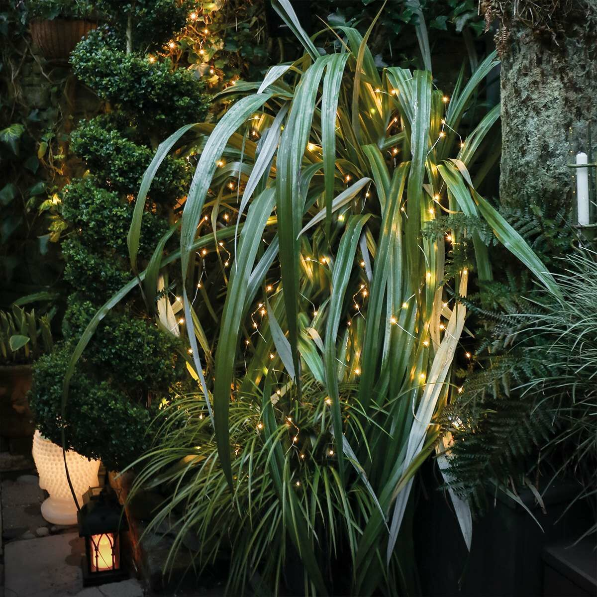 Outdoor Plug In Micro Fairy Lights on Silver Wire, 50 Warm White LEDs