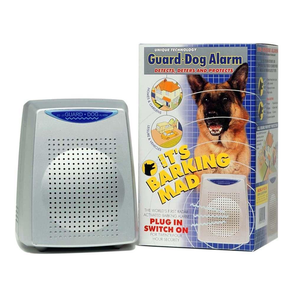 Electronic Watchdog