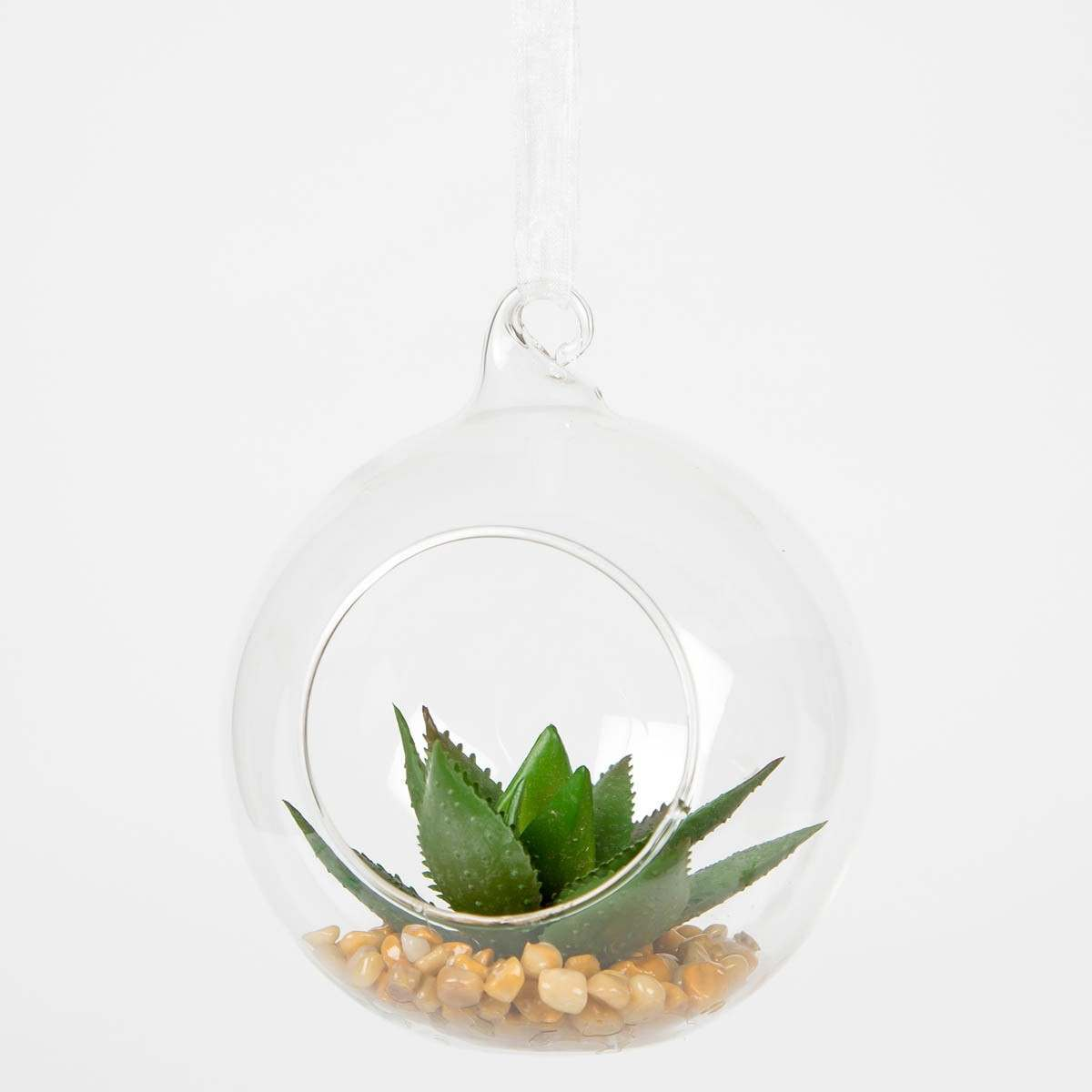 Glass Hanging Globe Terrarium with Plant 9 x 10cm