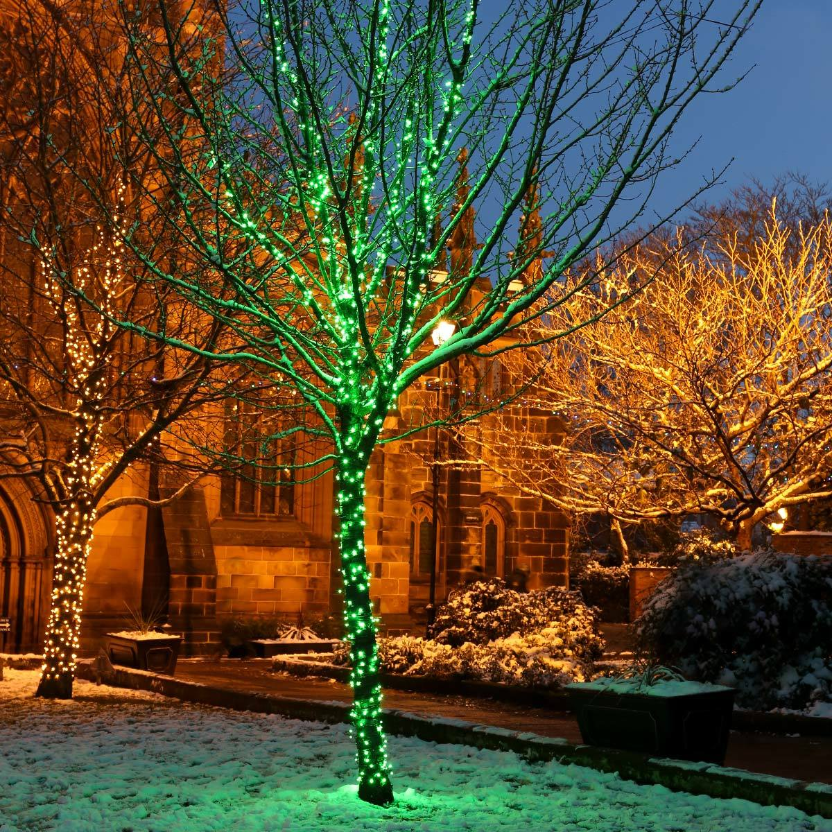 Click to view product details and reviews for 55m Green Christmas Fairy Lights Connectable 550 Leds Dark Green Cable.