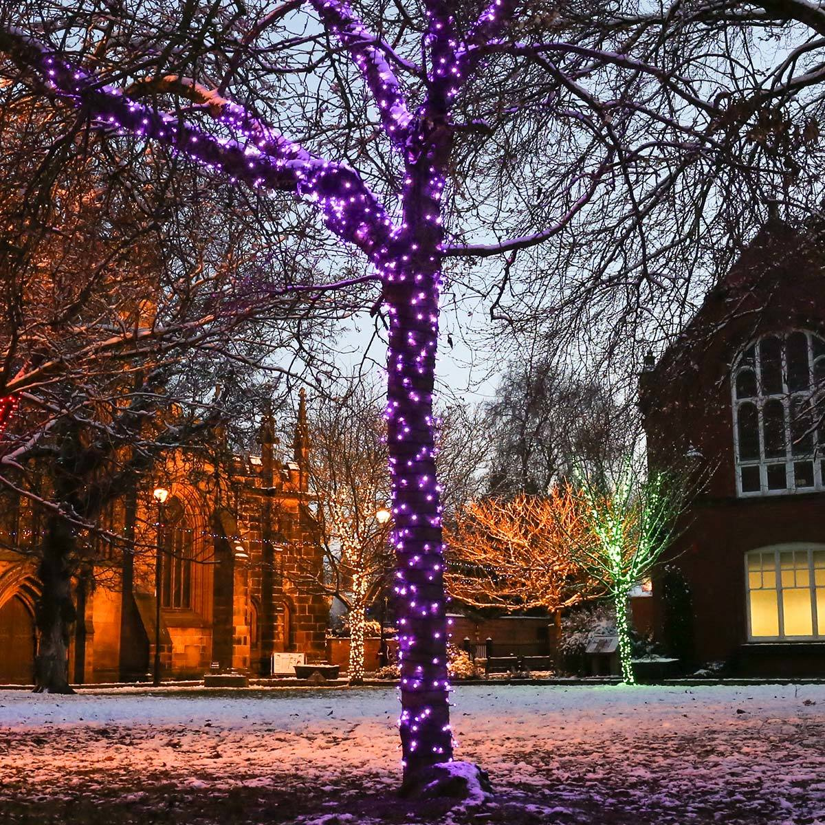 Click to view product details and reviews for 50m Purple Christmas Fairy Lights Connectable 500 Leds Dark Green Cable.