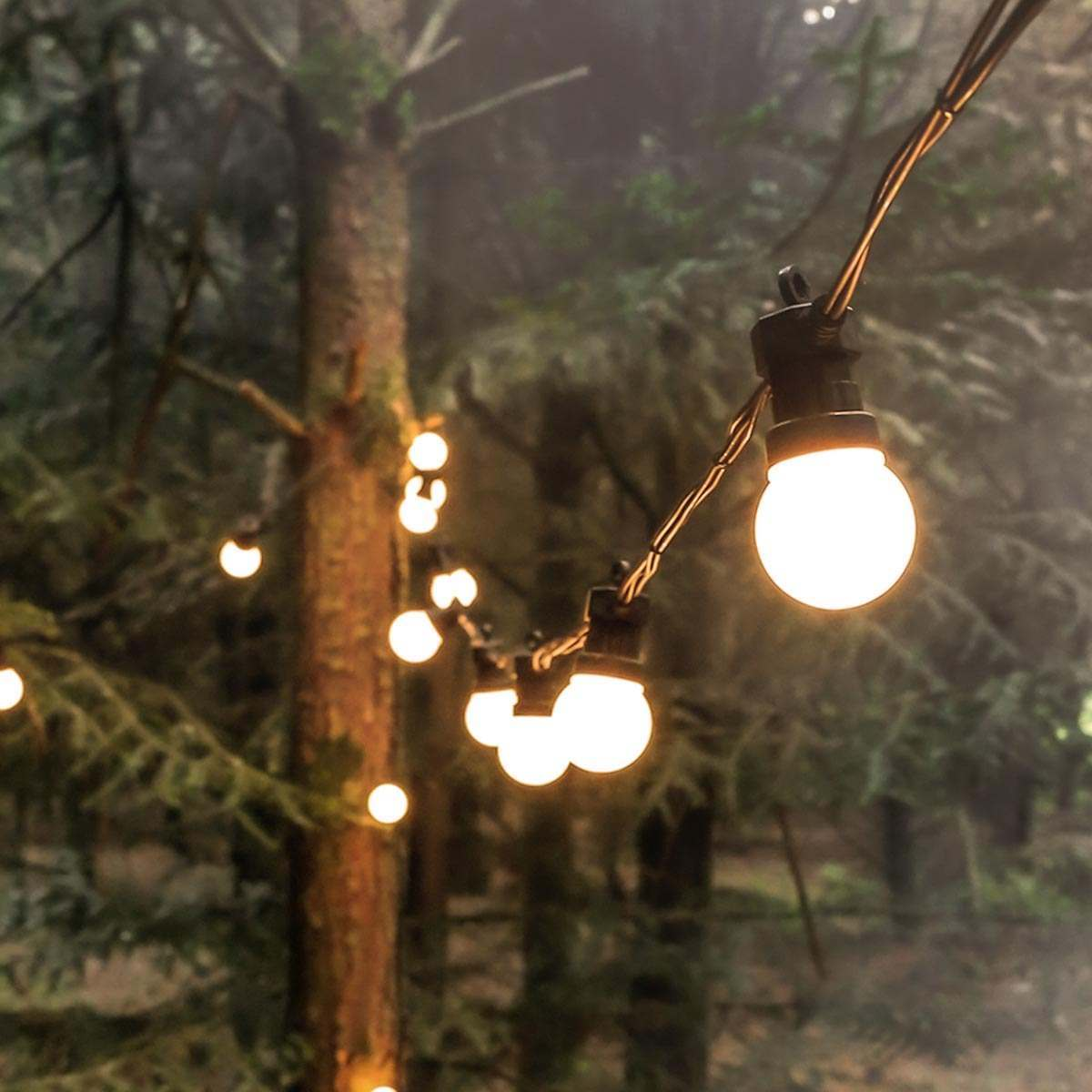 Click to view product details and reviews for 25m Christmas Festoon Lights Connectable 50 Warm White Leds Black Cable.