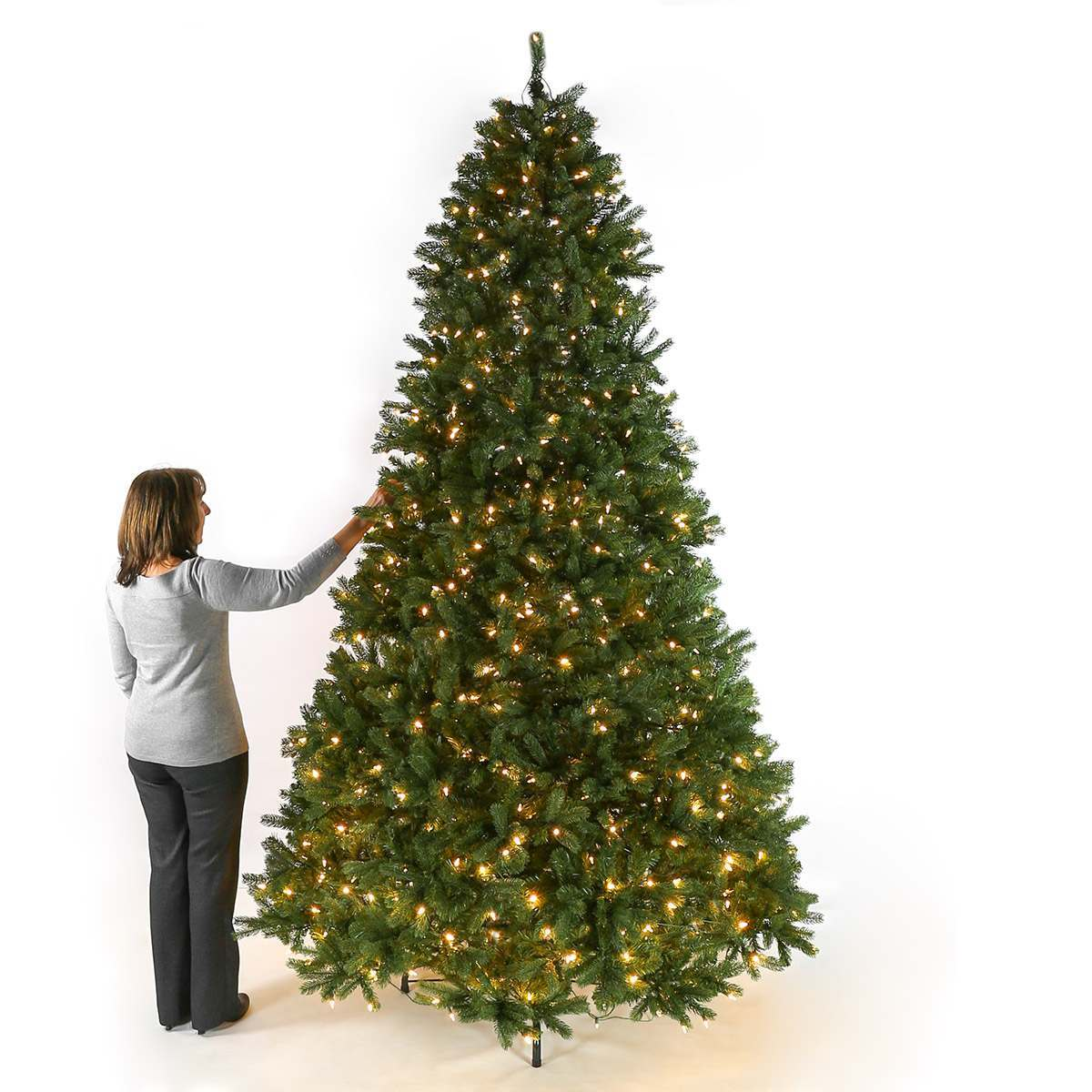 9ft Pre Lit Green Bayberry Spruce Artificial Christmas Tree