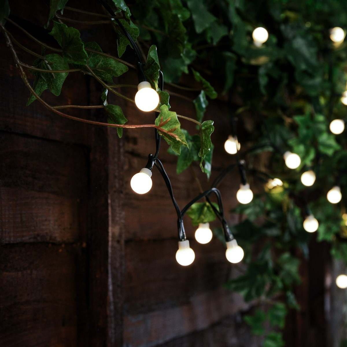 Click to view product details and reviews for Solar Multi Function Berry Christmas Fairy Lights 50 Warm White Leds 5m.