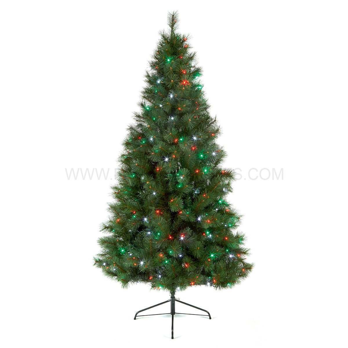 Outdoor christmas tree shop for cheap house decorations Outdoor christmas tree photos