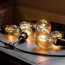 All FestoonPro bulbs