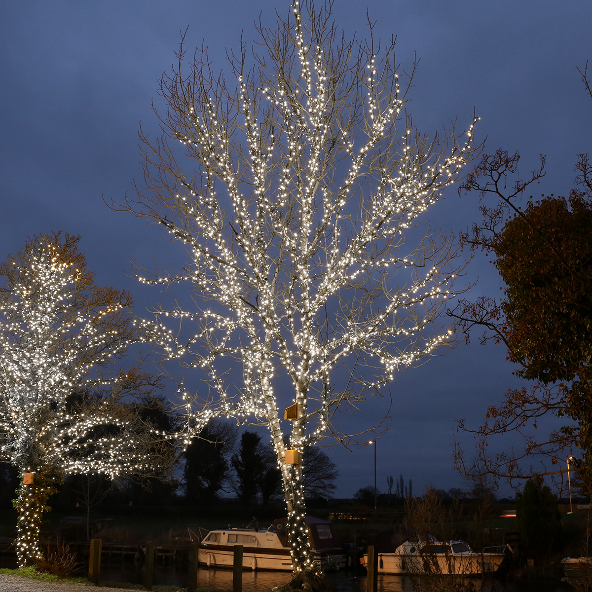 Picture of: Outdoor Battery Operated Lights Feel Good Lighting At Festive Lights